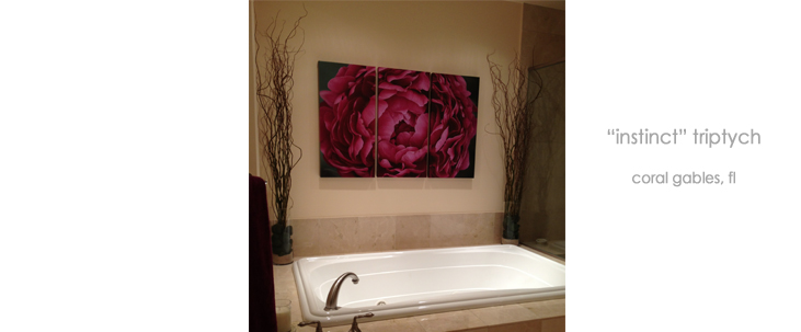 Installations Bathroom Triptych Wall Decor Macro Giclée Canvas Prints