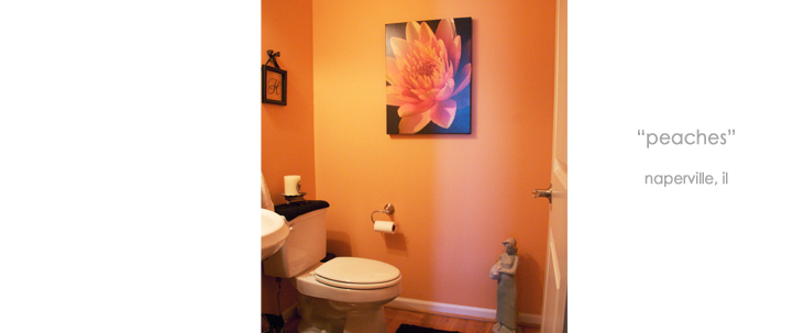 Installations Bathroom Wall Decor Macro Giclée Canvas Prints