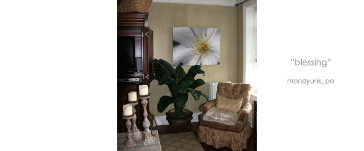Installation Living Room Floral Wall Decor Macro Photography Matted & Giclée Canvas Prints
