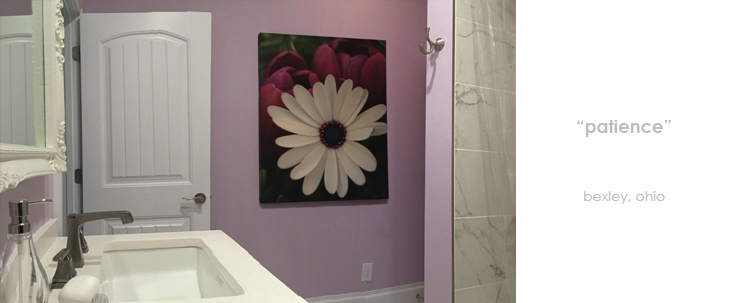 Installations Bathroom Flower Macro Photography Matted & Giclée Canvas Prints