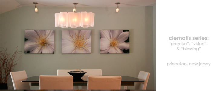Installations Dining Room Floral Wall Decor Macro Photography Matted & Giclée Canvas Prints