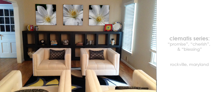 Living Room Floral Wall Decor Macro Photography Matted & Giclée Canvas Prints