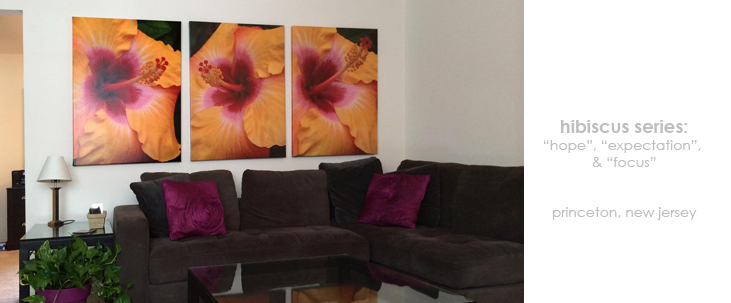 Installations Living Room Floral Wall Decor Macro Photography Matted & Giclée Canvas Prints
