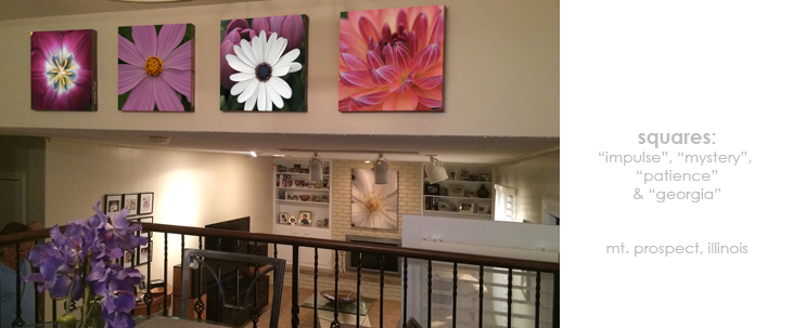 Installations Dining Room/Living Room Floral Wall Decor Macro Photography Matted & Giclée Canvas Prints