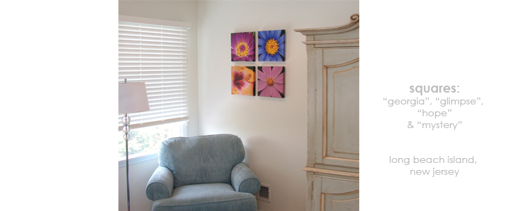 Installations Bedroom/Living Room Floral Wall Decor Macro Photography Matted & Giclée Canvas Prints
