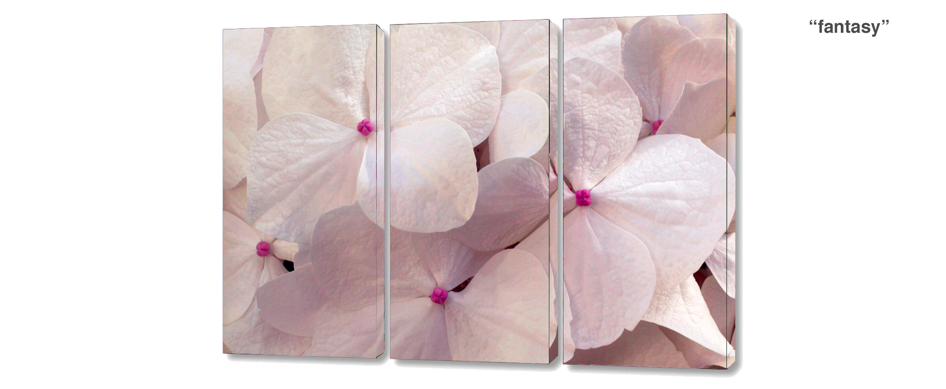 triptych - 3 Piece limited edition giclee canvas floral wall decor
