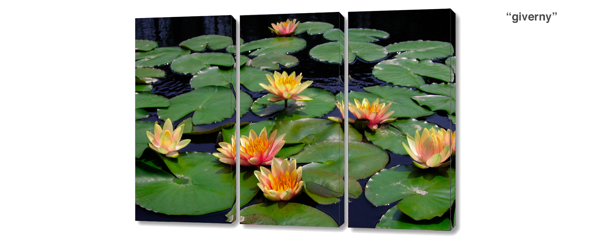 triptych water lily pond - 3 Piece limited edition giclee canvas floral wall decor