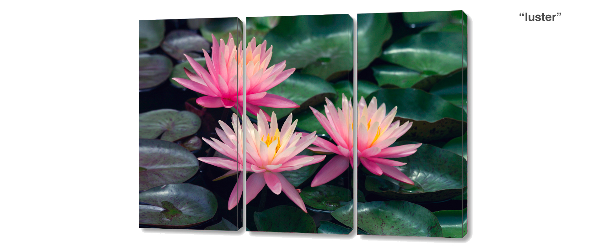 triptych water lilies - 3 Piece limited edition giclee canvas floral wall decor
